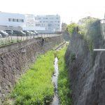 熊本市東区保田窪 藻器堀川
