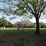 保田窪公園(熊本市東区)