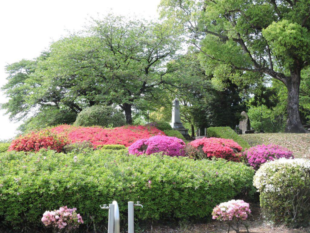 昭和園(大津町)