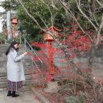 疋野神社三の鳥居